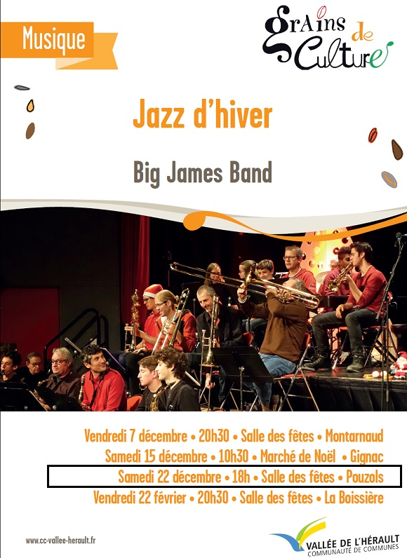 2018_decembre_big_james_band.jpg